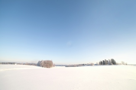 Snowy field in cold winter. photo