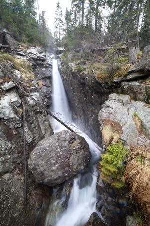 River in High Tatras highland, Slovakia Stock Photo - 13590144