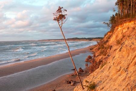 Steep coast of Baltic sea, Latvia , Europe