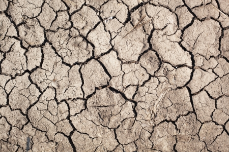 Closeup of dry soil  Stock Photo - 14647651