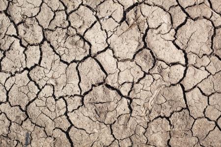 Closeup of dry soil Stock Photo - 14647651