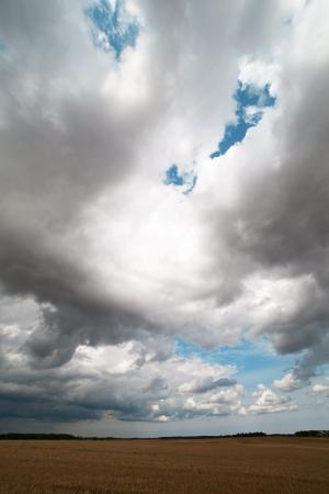 Dark clouds in summer afternoon  Stock Photo - 14697515