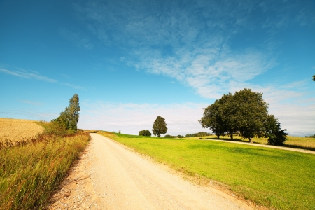 Rural road in latvian landscape