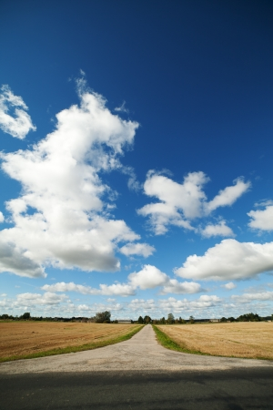 Rural road in nice day  photo