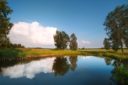 Pond and cloud in summer evening  photo