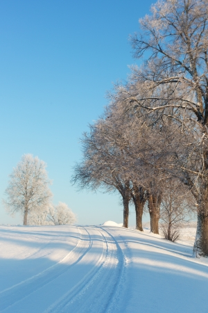 Country road in winter time  photo