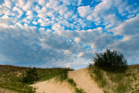 Dunes at Baltic sea coast, Latvia  photo