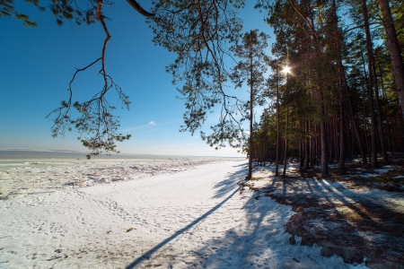 Sunshine at Baltic sea in winter time  Stock Photo - 18385608