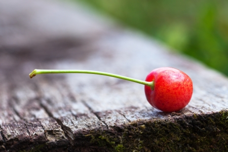 Cherry on on old wooden board. photo