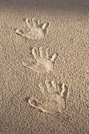 Handprints in wet sand. photo