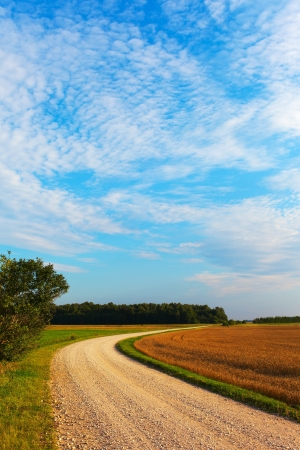 Gravel road in summer evening. photo
