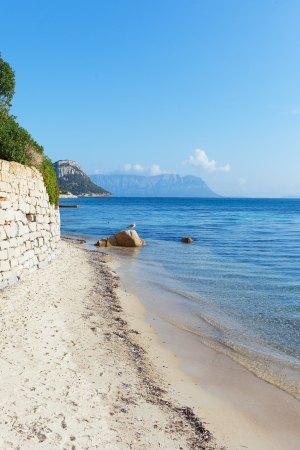 golfo: Coast of gulf Golfo Aranci, Sardinia, Italy.