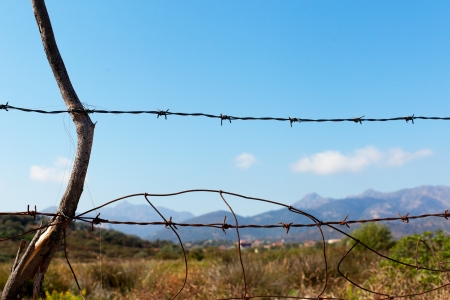 Barbed wire fence in sardinian counryside. Stock Photo - 23378919