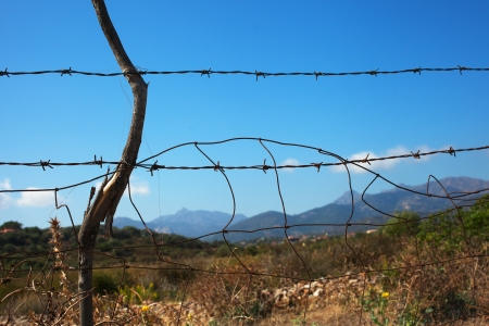 Barbed wire fence in sardinian counryside. Stock Photo - 23378929