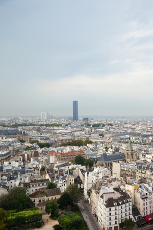 Aerial view of Paris from Notre Dame cathedral. photo