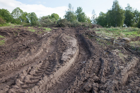 Tractor tire tracks in muddy soil. Stock Photo