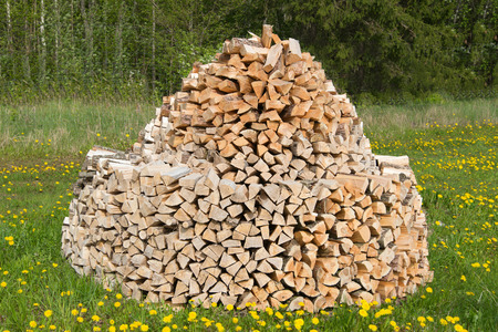 stack of firewood: Stack of firewood on green meadow.