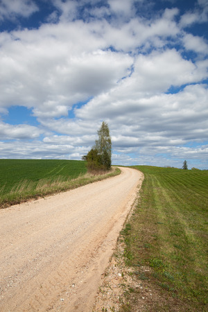 Dry rural road in spring time. photo