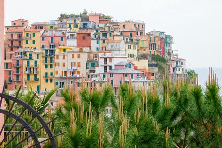 cinque: Manarola village in Cinque Terre, Liguria, Italy. Stock Photo