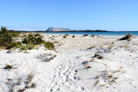 cinta: Summer sun on La Cinta beach near San Teodoro, Sardinia , Italy.