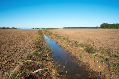 ditch: Ditch in agricultural field.