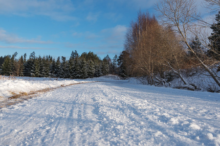 winter time: Winter time in latvian countryside. Stock Photo