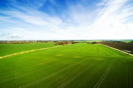 Champs verts au printemps, comté de Tukums, Lettonie.