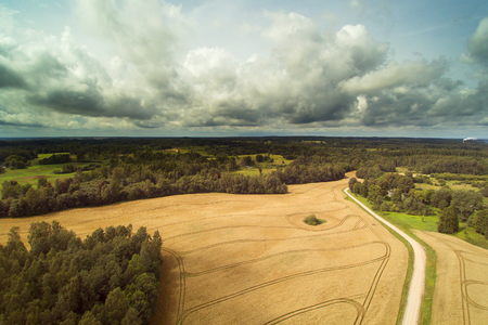 Agricultural fields in Late summer, Latvia.