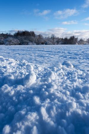 latvia: Winter landscape. Stock Photo