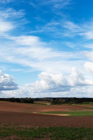 countryside landscape: Countryside landscape, Latvia.