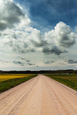 latvia: Gravel road in summertime. Stock Photo