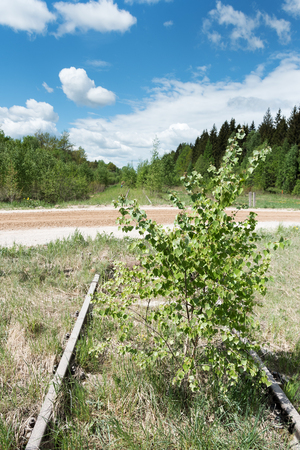 Abandoned railway in green landscape. Stock Photo