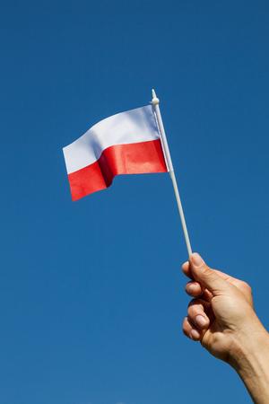 Poland flag .