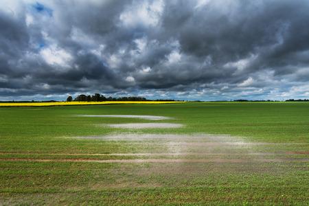 Campo mojado después de fuertes lluvias Foto de archivo - 85112613