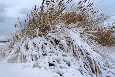 Winter on Baltic sea beach.