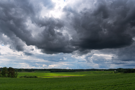 Summer afternoon in countryside, Latvia. Stock fotó - 97872037