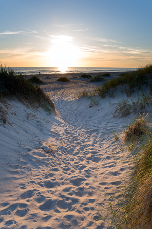 Baltic sea beach in evening light.