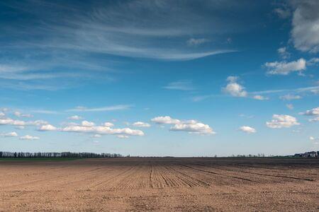 Rural landscape in spring time.