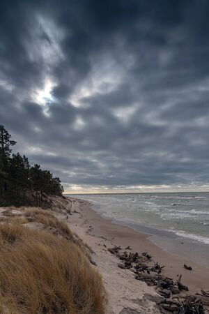 Baltic sea coast in cold day.