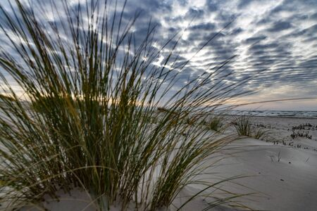 Scattered clouds over Baltic sea on calm day. Stok Fotoğraf