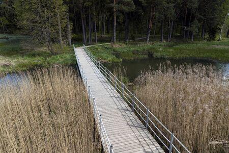 Wooden footbridge in wetland, Kazdanga, Latvia. Stok Fotoğraf