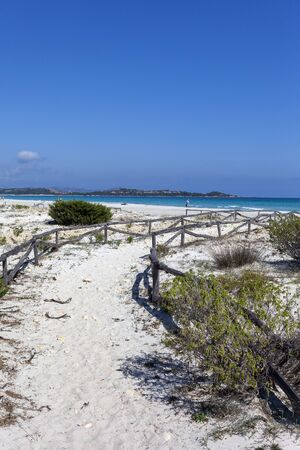 Sardinia sandy landscape on La Cinta beach next to San Teodoro, Italy.