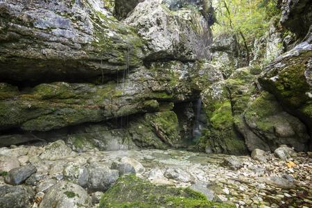 Small creek making tiny waterfalls dripping from rocks 版權商用圖片