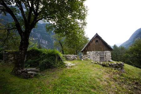 Old mountain hut with an old tree in the middle of the remote mountain valley, Alps, Slovenia