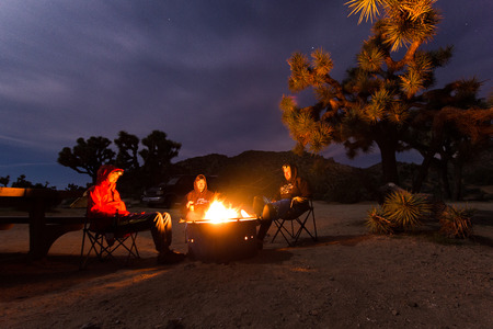 Group of young people sitting at campfire during the night in Joshua Tree National Park - concept of camping, traveling, freedom, adventure