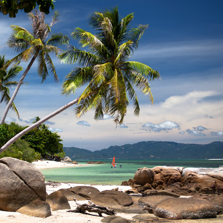 Beautiful beach with white sand and blue sea surronded with palm trees and rocks.