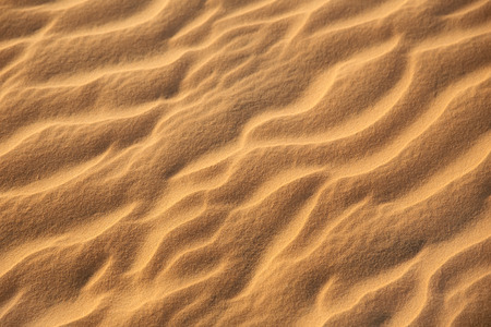 Sand texture. Waves on the golden sand.