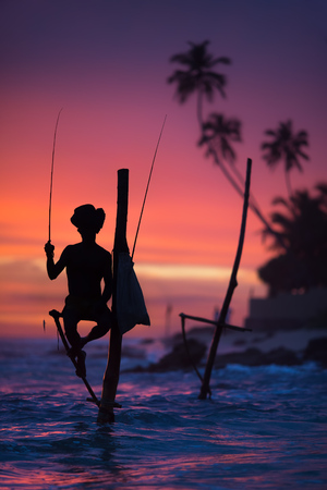 Sri Lanka's Stilt Fisherman. Vissen op stilt is heel gebruikelijk in veel Aziatische landen, maar vooral - in Sri Lanka, in het dorp Ahangama. Stockfoto