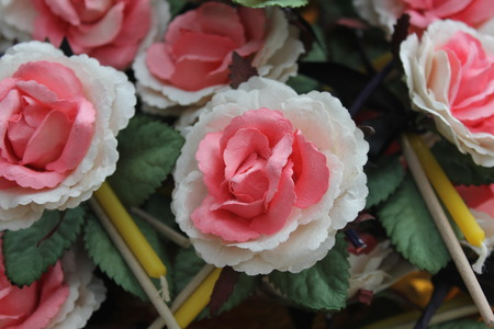 Many Sandalwood Flowers white and pink color with incense and yellow candles sticks soft focus. Banque d'images