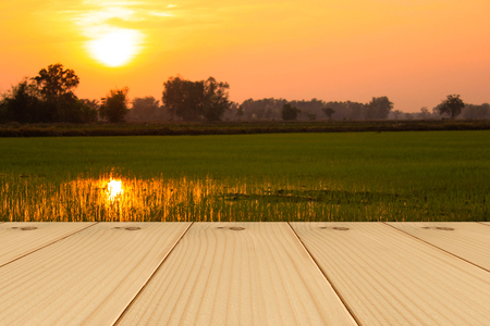 Wooden board on beautiful Sunset at the lush green rice paddies background Stock fotó